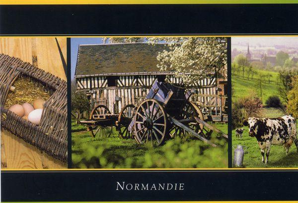 Austerlitz 362---Normandie
