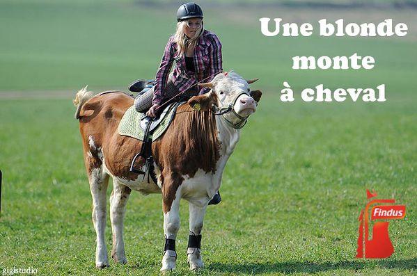 [maiskilaicon N°hors série]On est Jeudi c'est ravioli ! - Page 2 Une-blonde-monte-a-cheval-Findus