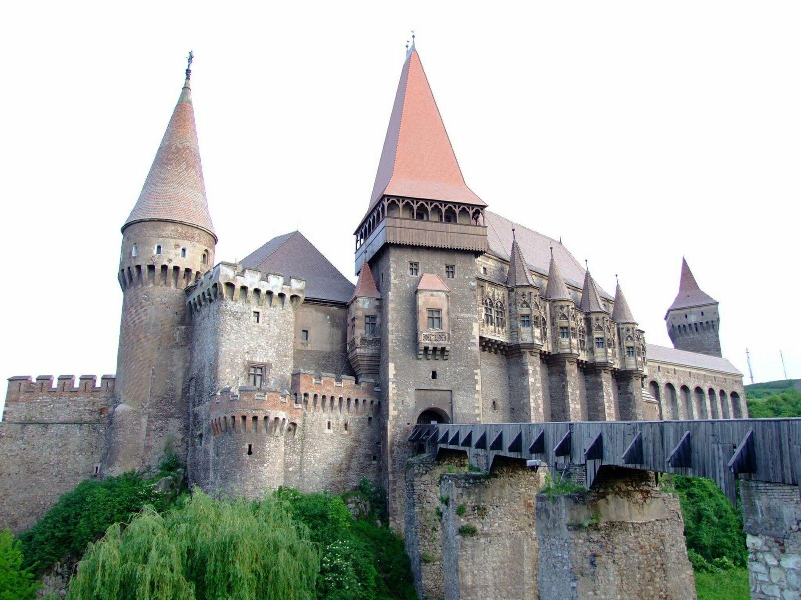 un château - ajonc - 12 juin 2016 trouvé par snoopie Chateau-hunedoara-roumanie