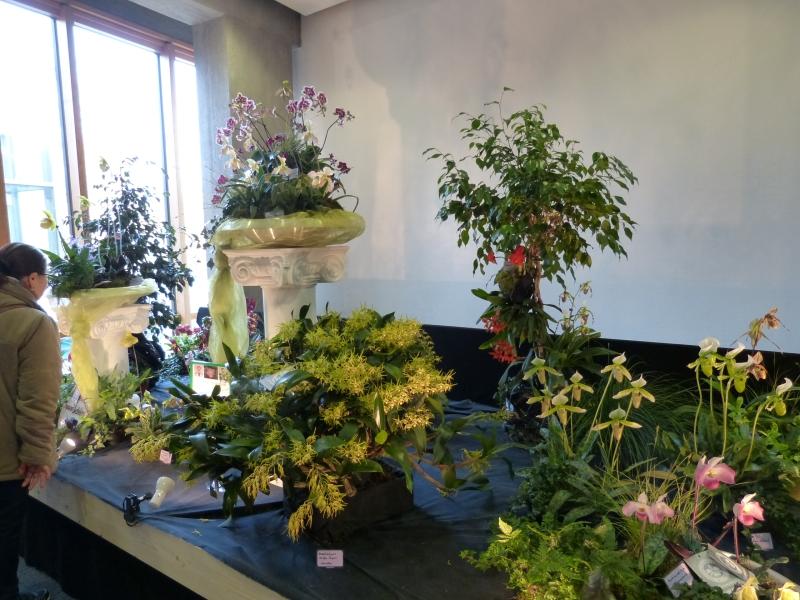 Neu-Ulmer Orchideentage 07.02.-09.02.2014   0018aj9j