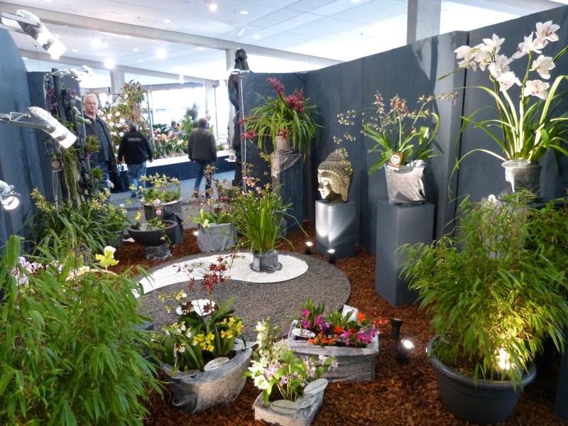Neu-Ulmer Orchideentage 07.02.-09.02.2014   013ckj28