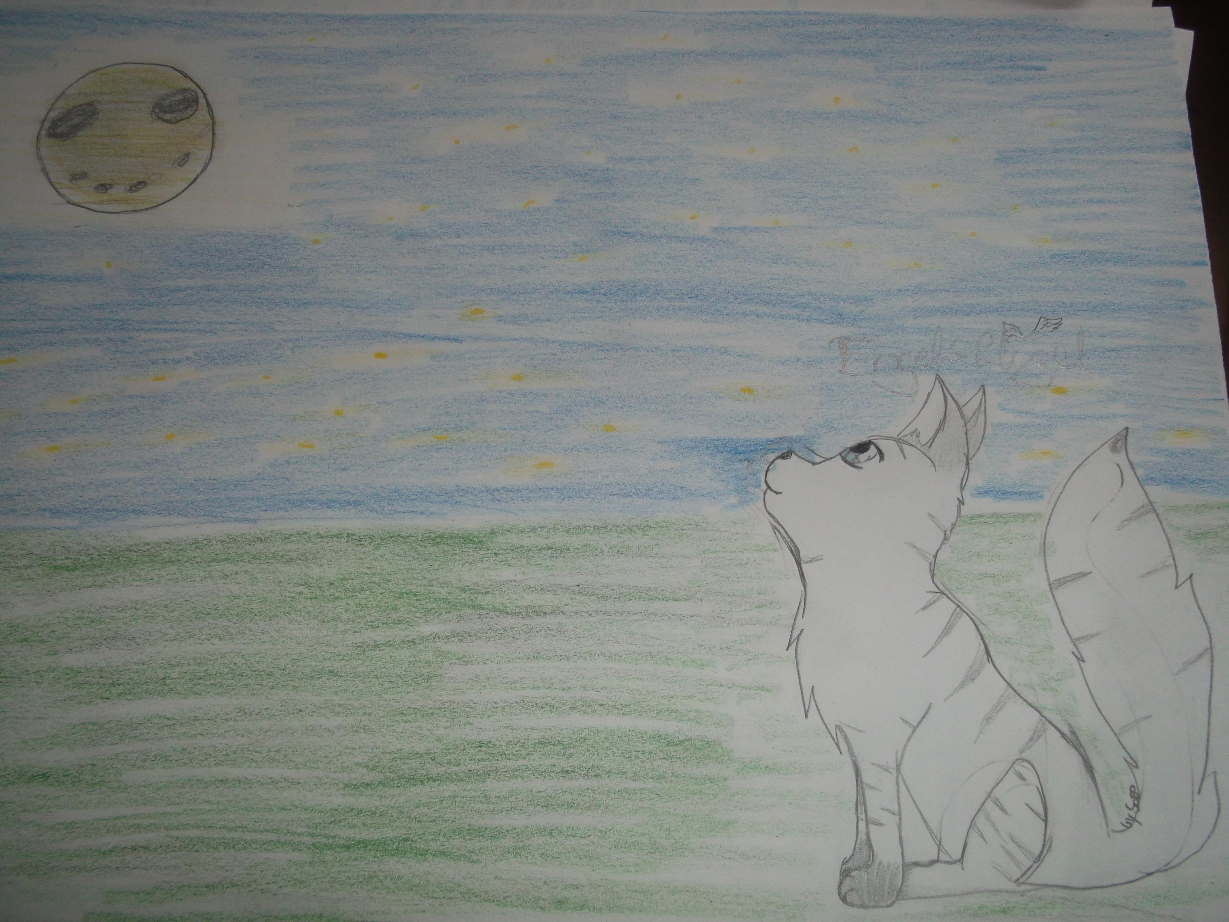 Die Hochfelsen und der Mondstein - Seite 3 Dscf1656nzp9j