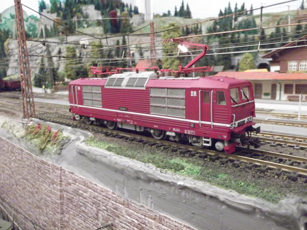 Die BR 230 der DR bzw. 180 der DB AG - auch Knödelpresse genannt Dscf22996bydj