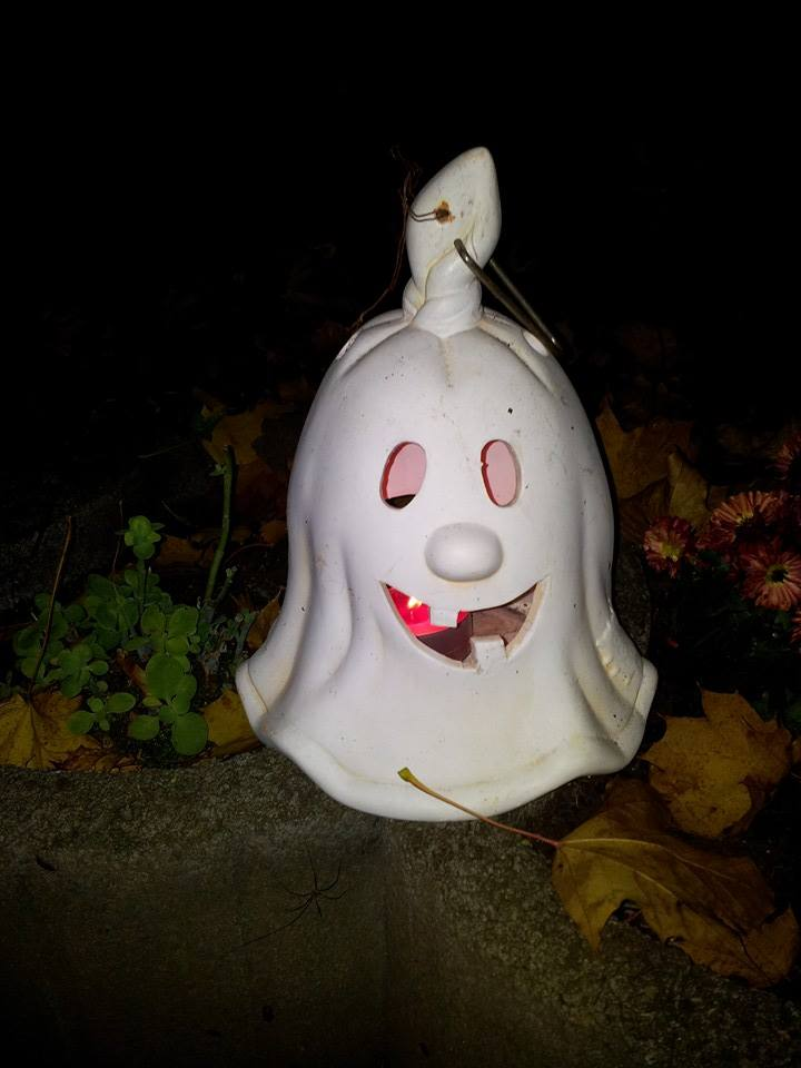 Halloween 2013 Halloween2013_4fpcjy