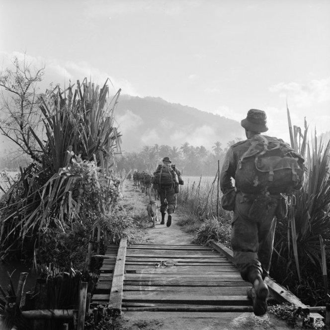soldats britanniques, australiens, néo-zélandais... et malaisiens Nzsasmal68drg