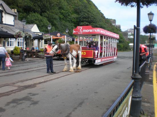 Es war einmal The-tram-coming-along4qcoq
