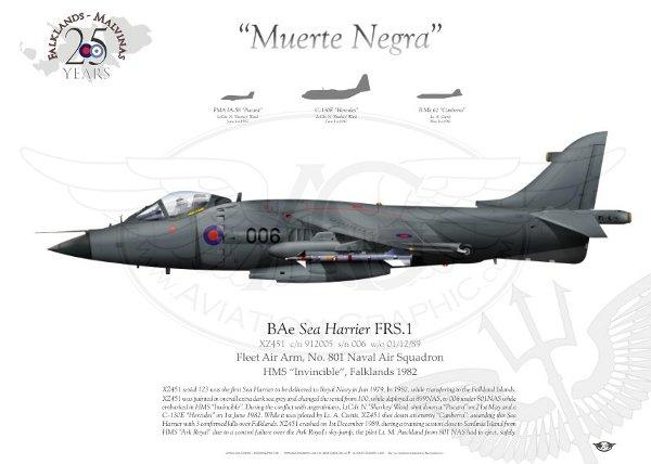 AVION DE COMBATE HARRIER HISTORIA Y VARIANTES Aircraft_harrier_frs.1_faa3