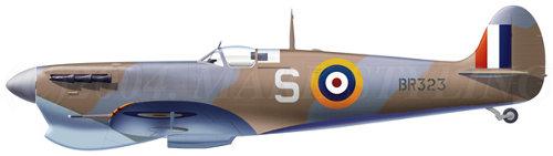 "George Frederick ""Buzz"" Beurling  No. 249 Squadron RAF Malta 1942 Aircraft_spitfire.mk.v_beurling"