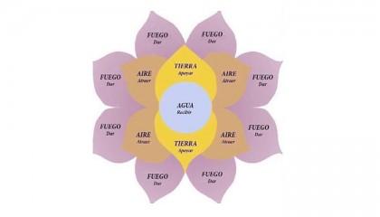 Hasta 10 años de cárcel a quien organice 'flor de la abundancia Flor-de-la-abudancia_ESPECIAL-420x240