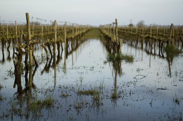 Chuva, relâmpagos, enfim ... Açores - Página 2 Golega_mar2010_009