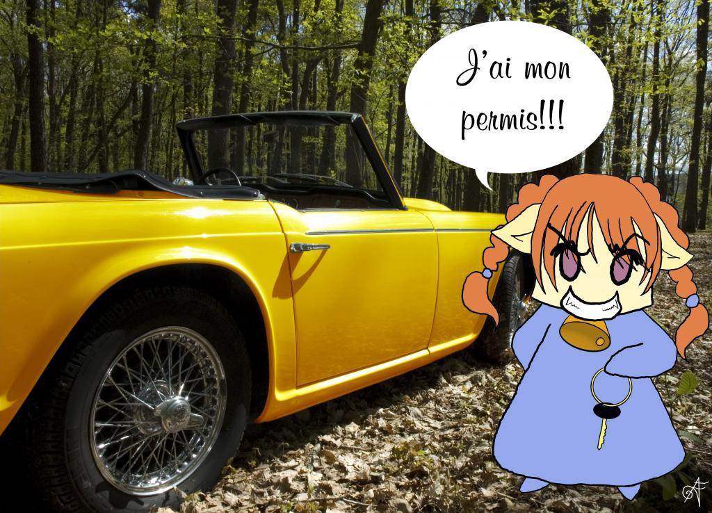 les éléments 8638-voiture-jaune-moi
