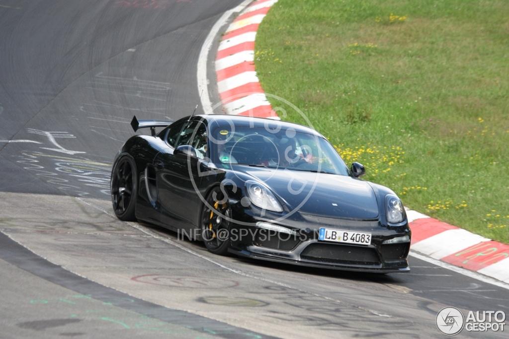 2016 - [Porsche] 718 Boxster & 718 Cayman [982] - Page 2 Porsche-cayman-gt4-c824215082014135827_2
