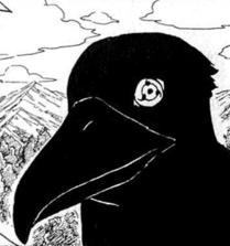 Kurama Shiro - Passeio - Página 3 _209567732