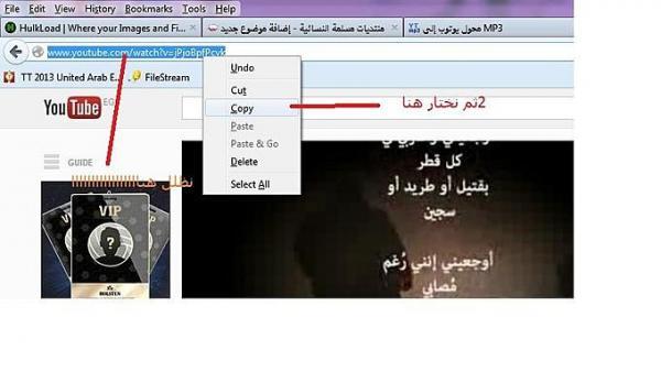 كيفية تحويل فيديو من اليوتوب الى mp3 Post-25272-0-77801900-1370875925
