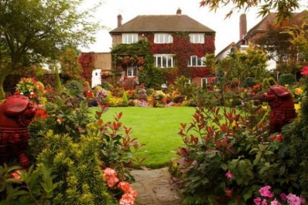 الحدائق المنزلية 631