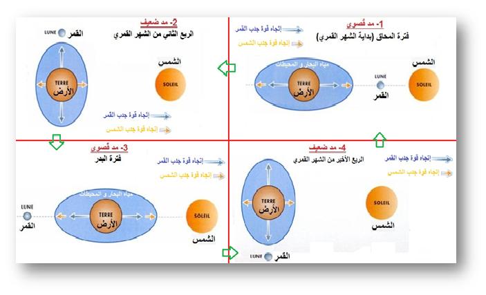 موسوعة المد و الجزر- حصريا على منتدى واحة الإسلام B