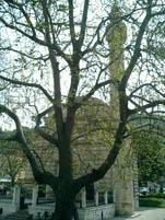 Religious Monuments Mosque_of_Muradije