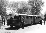 Transportation 1210414844-trans