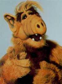 Альф/Alf ..... Alfface