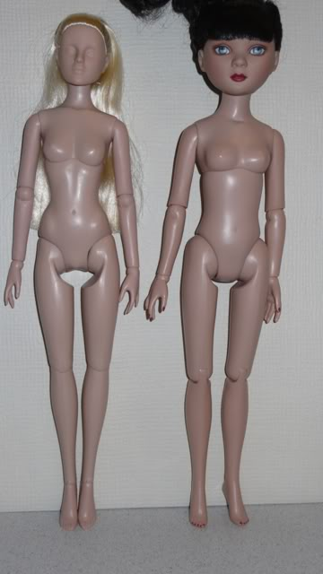 Comparaisons corps fashion dolls: images & liens Inti_DOLLS010