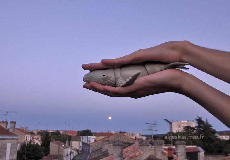 J'ai demandé à la lune (TC Jubilee) p3 - Page 3 Nephele2021_04