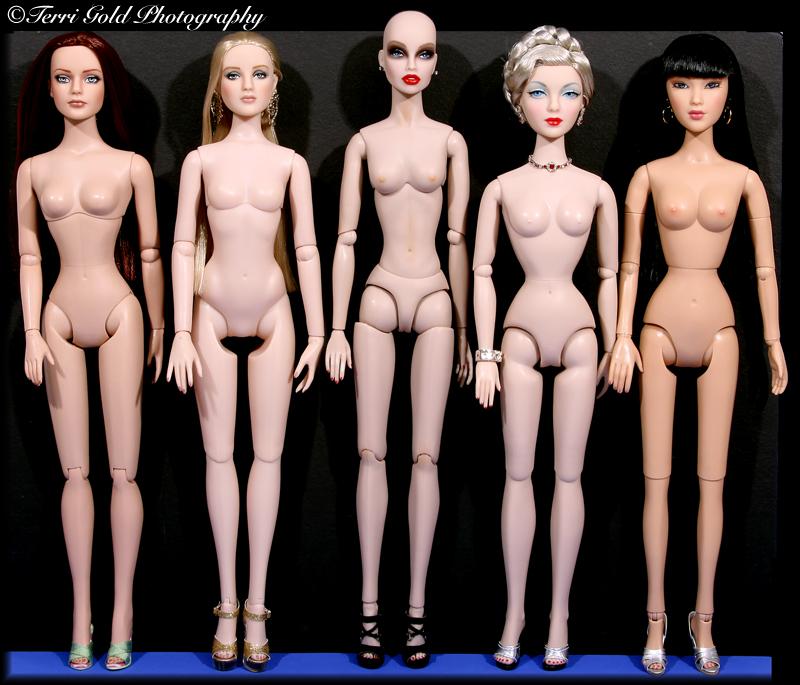 Comparaisons corps fashion dolls: images & liens Terri_dvswwg
