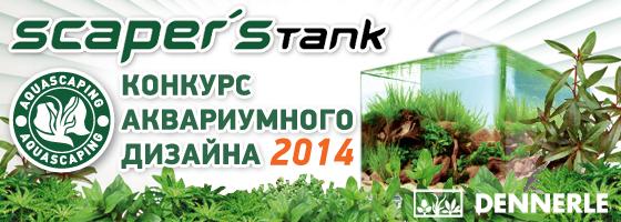 Конкурс аквариумного дизайна DENNERLE Scaper's Tank 2014 Banner_560x200_rus