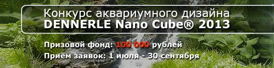 Конкурс аквариумного дизайна DENNERLE Nano Cube® 2013 HeaderDENCont2013_006