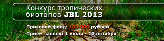 Конкурс тропических биотопов JBL 2013 HeaderJBLCont2013_006