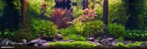 Конкурс аквариумного дизайна регионов России 2014 Kadr_n_10
