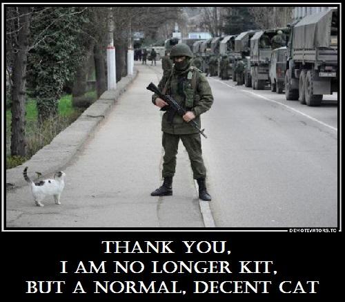 Les Russes arrivent  Thank-you-I-am-no-longer-KIT-but-a-normal-decent-cat