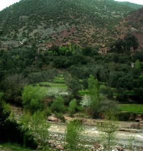 المغرب:الجغرافيا الطبيعية T-ourika1p