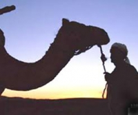 التراث الشعبي الفلسطيني في الرحلات العربية Thumb_1281950408-6551