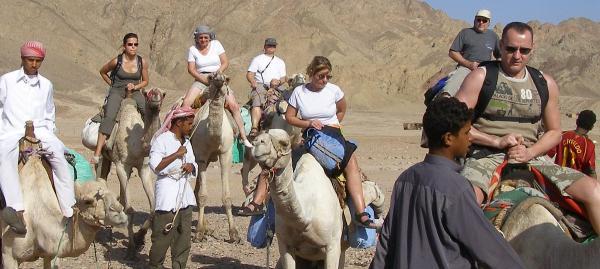 Mein Leben und ich ...  > SINAI < Kamele
