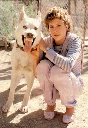 Quel sont vos films préférés avec des chiens ? Whtdog