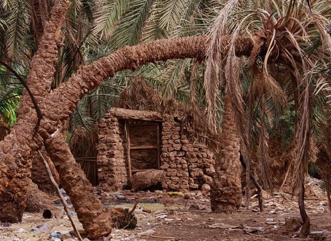 Egipat Egypt_1%20(16)