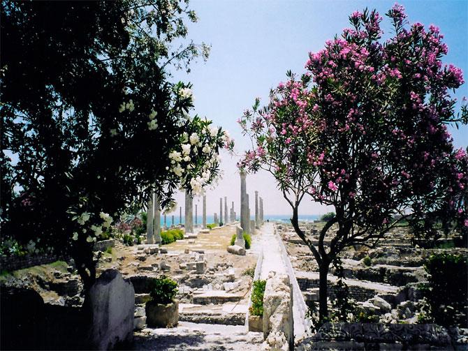 Arhitektura - Page 5 Lebanon_photography%20(3)