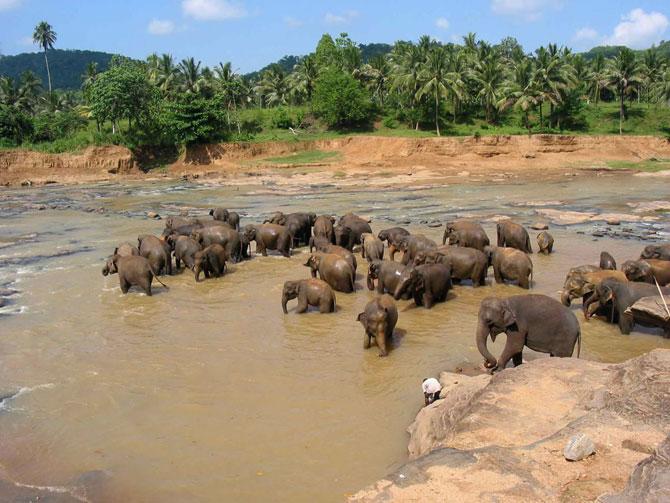 Šri Lanka Interesting_places_to_visit%20(5)