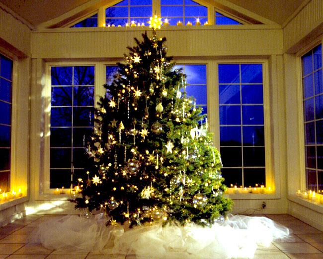 Urime Krishtëlindjet dhe Vitin e ri 2016 Beautiful_christmas_tree_pictures_16