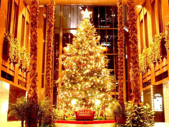Urime Krishtëlindjet dhe Vitin e ri 2016 Beautiful_christmas_tree_pictures_18