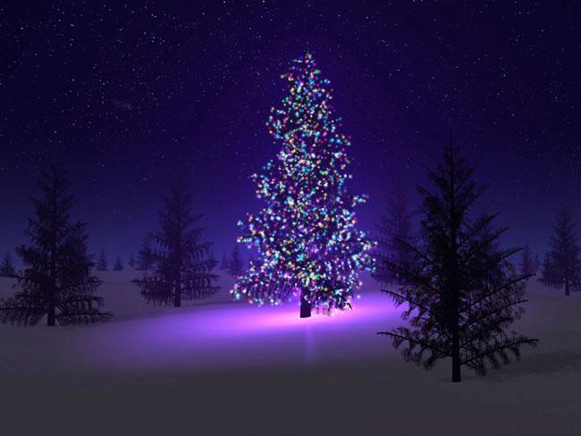 Urime Krishtëlindjet dhe Vitin e ri 2016 Beautiful_christmas_tree_pictures_4