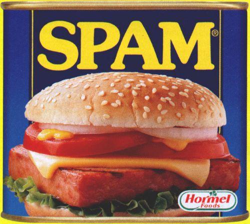 Yooooo!!!! all of Cham.com, i'm giving y'all a WARNING Spam_1