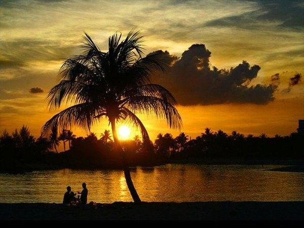 Images coucher de soleil 010684d6