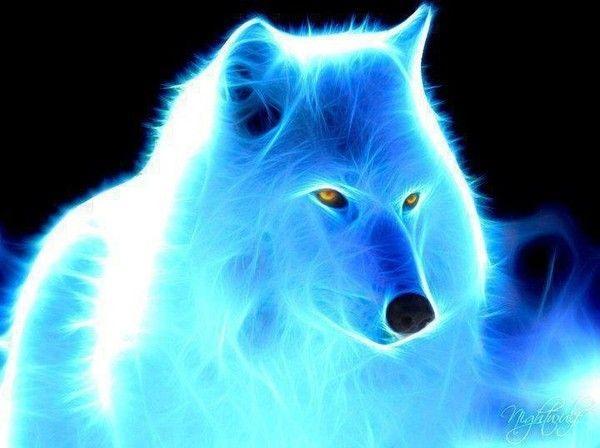 alpha omega - Alpha et Omega - Tome 1 : Le cri du loup de Patricia Briggs 4342289d