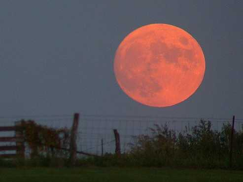 Harvest Moon Rising - Don't Miss Out the 'Most Beautiful Full Moon' of the Year The-full-harvest-moon-is-coming