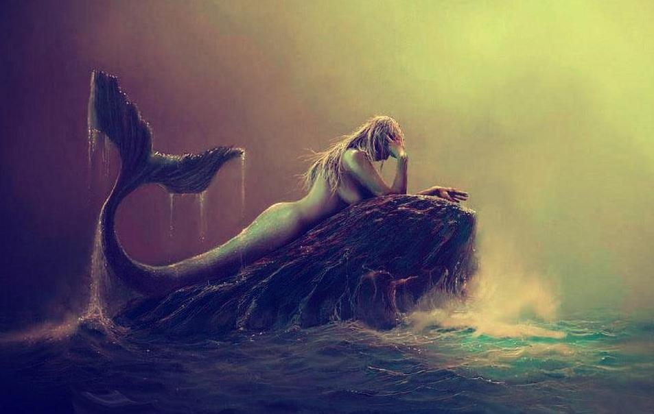 Bienvenidos al nuevo foro de apoyo a Noe #301 / 15.12.15 ~ 22.12.15 Mermaidblog