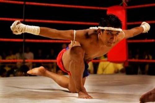 Muay Thai được xem là vô cùng thực dụng trong lối đánh tự do rất tàn bạo. 1354088344-the-thao-muay-thai-1
