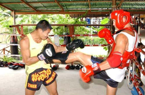 Muay Thai được xem là vô cùng thực dụng trong lối đánh tự do rất tàn bạo. 1354088344-the-thao-muay-thai-2
