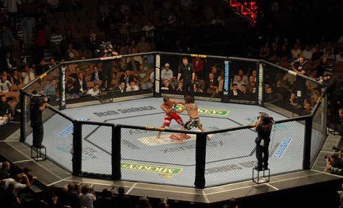 MMA - Võ thuật tổng hợp 1354767236-the-thao-UFC