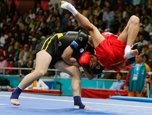 MMA - Võ thuật tổng hợp 1354767236-the-thao-tan-thu